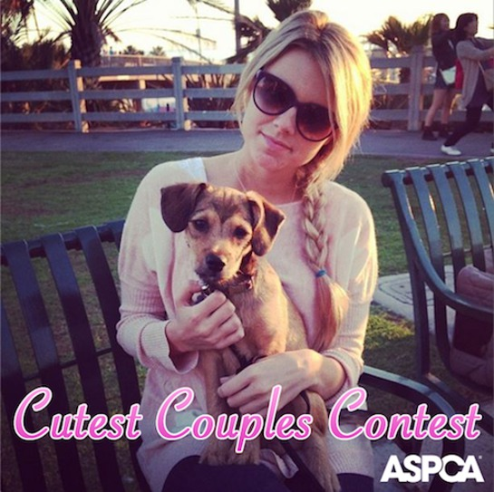 ASPCA and Ali Fedotowsky team up for Cutest Couples contest to promote shelter pets