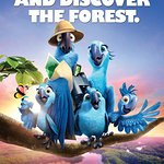 Discover The Forest With Rio 2