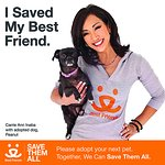 How Rescue Pets Danced Their Way Into The Heart Of Carrie Ann Inaba