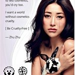 Zhu Zhu Cries For Animals To Ban China's Cruel Cosmetics Animal Testing