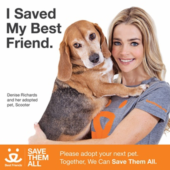 Denise Richards - Save Them All