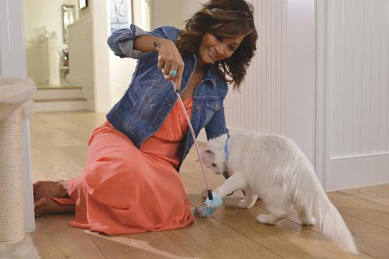 Carrie Ann Inaba partnered with Purina ONE to help educate cat owners everywhere about cat health and well-being