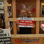 James Cromwell Protests Against Air France