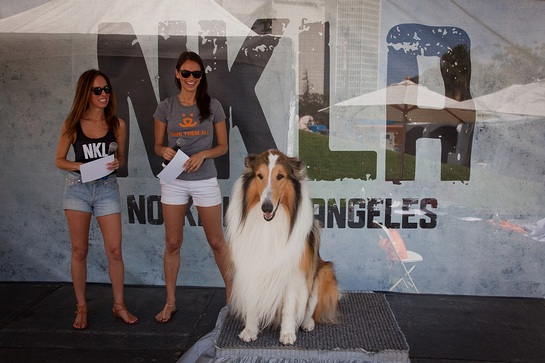 Stylist/blogger Sydne Summer and model/television personality Asha Leo onstage with iconic American hero dog Lassie