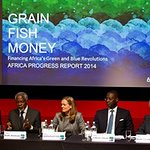 Bob Geldof And Kofi Annan Launch Africa Progress Report