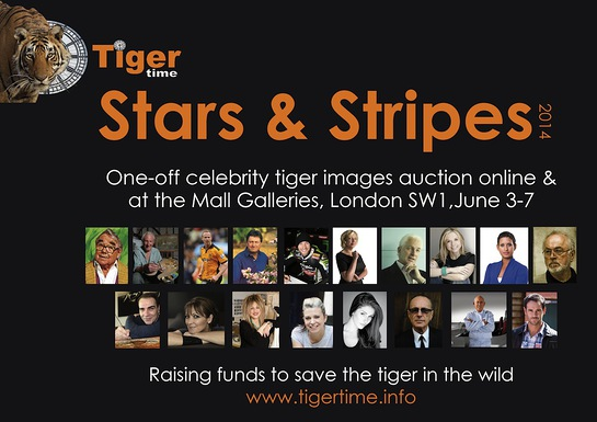 2014 Stars & Stripes celebrity art auction
