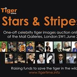Celebrity Art Auction Supports Tigers In The Wild