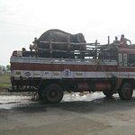 Sunder The Elephant Heads To A New Home