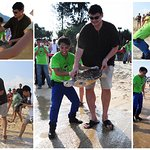 NBA Star Yao Ming Saves Endangered Sea Turtles