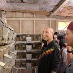Sam Simon Rescues 400 Chinchillas From Cruelty