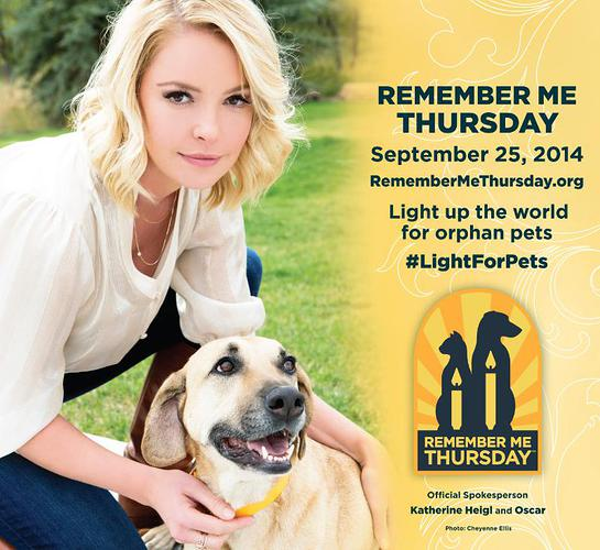 Remember Me Thursday 2014 official spokesperson Katherine Heigl with Oscar,one of her adopted dogs