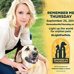 Katherine Heigl Supports Remember Me Thursday