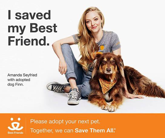Amanda Seyfried Wants Your Help To Save Them All