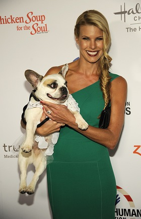 Beth Stern Co-Hosts Hero Dog Awards