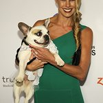 Stars Honor Hero Dogs With The American Humane Association