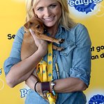 Miranda Lambert Puts Shelter Dogs Center Stage At Pedigree Adoption Suite