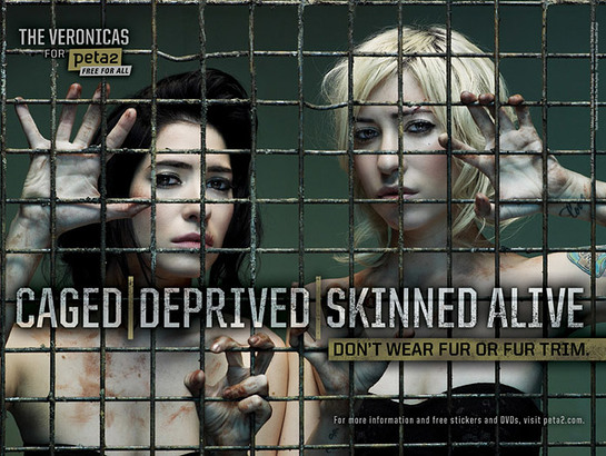 The Veronicas New PETA Ad