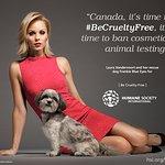 """""""Bitten"""" Star Laura Vandervoort Calls on Canadian Government to #BeCrueltyFree"""