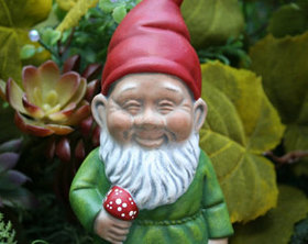 Hairy Gnomes Are Happy Gnomes