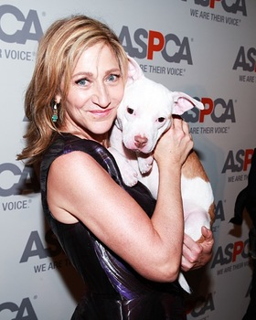 Edie Falco at ASPCA Bergh Ball