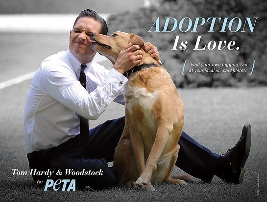 Tom Hardy PETA Ad