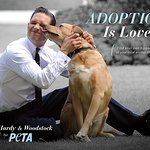 Tom Hardy Encourages Pet Adoption