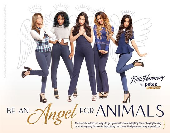 Fifth Harmony Angels For Animals
