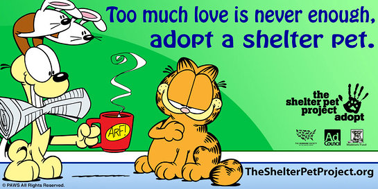 Garfield Joins Shelter Pet Project