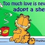 Jim Davis And Garfield Help Shelter Pet Project
