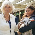 Duchess Of Cornwall Visits Special Farm In London