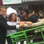 Kristin Davis Attends Ivory Crush In Times Square