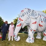 Prince Charles Hosts Reception In Support Of Endangered Elephants