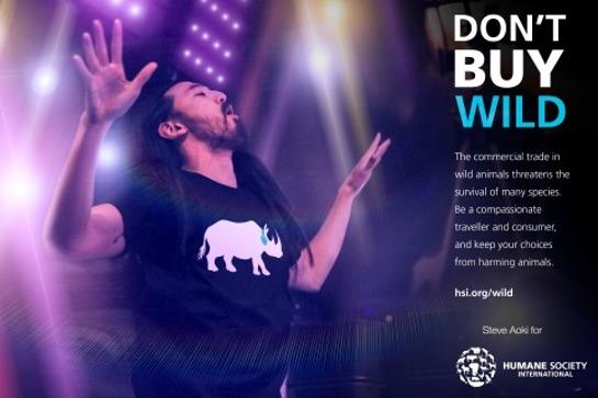 Steve Aoki - Don't Buy Wild