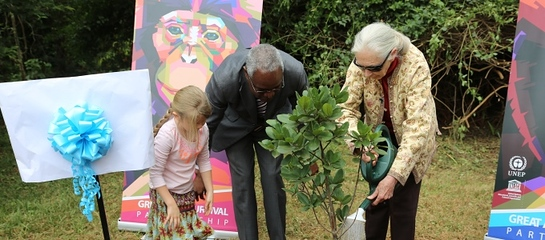 Jane Goodall (R) and UNEP Deputy Executive Director, Ibrahim Thiaw (L) during the tree-planting ceremony