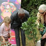 Jane Goodall Promotes Environment At United Nations Ceremony In Kenya