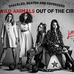 Little Mix Want Wild Animals Out Of The Circus