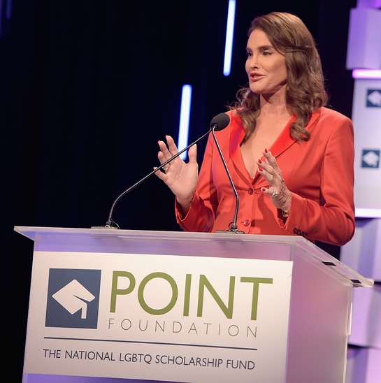 Caitlyn Jenner speaks onstage during the Point Foundation0s Annual Voices On Point Gala at the Hyatt Regency Century Plaza