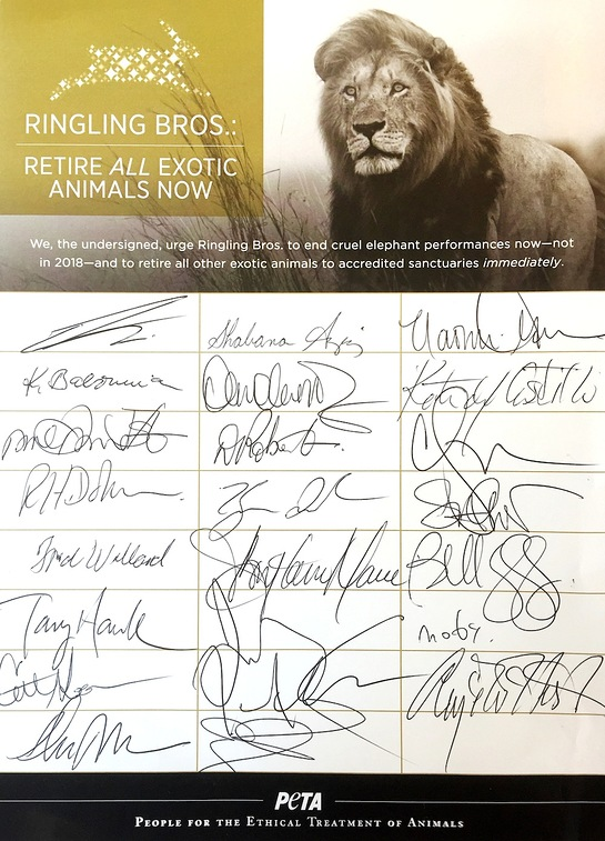 Stars Call On Ringling To Retire All Exotic Animals